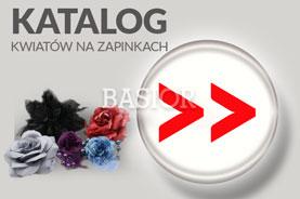 katalog-do-pobrania